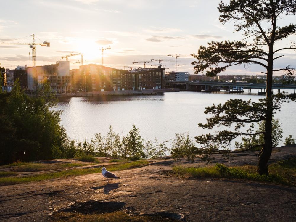 Kalasatama Mustikkamaan pohjoispuolen kallioilta 6.6.2016